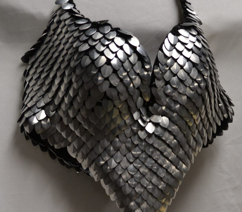 A silver scalemaille bra top.