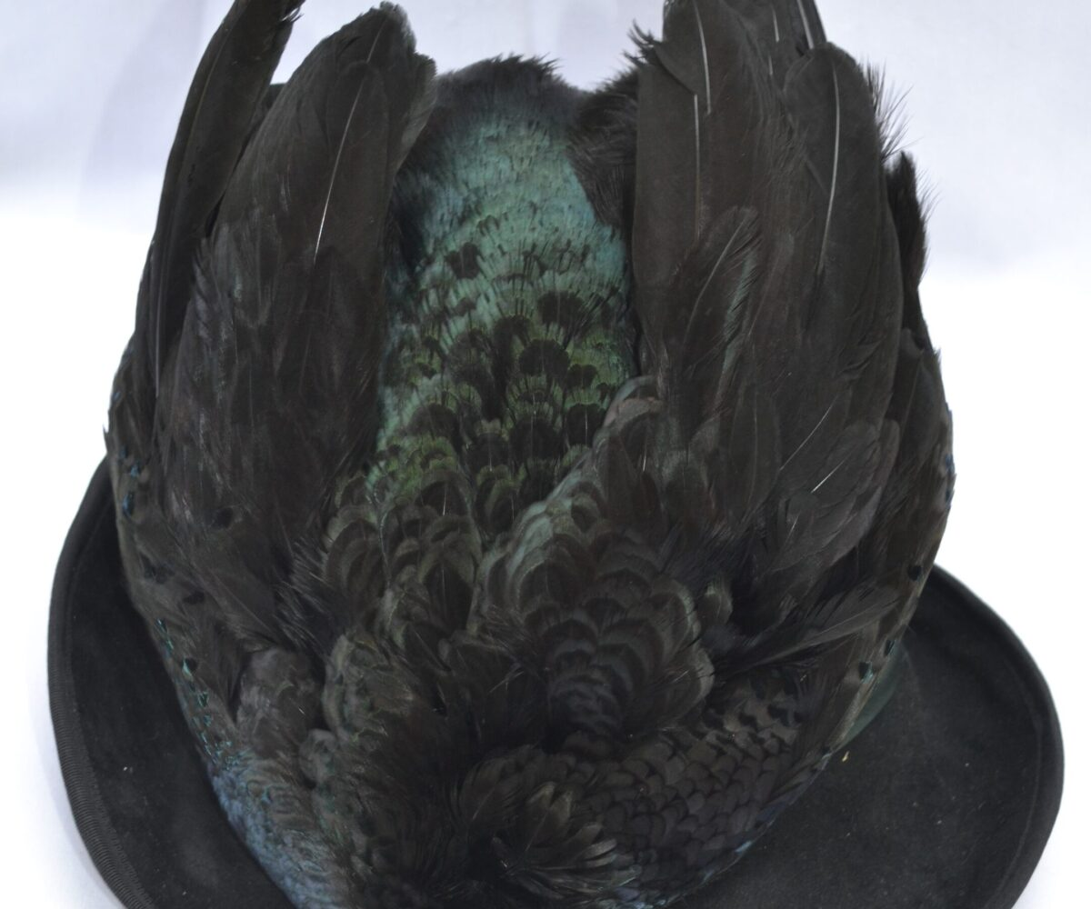 A black hat with a large taxidermy bird covering the top.
